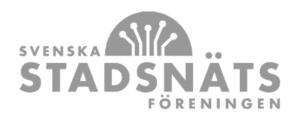 ssnf_logo-300x118